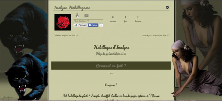 Habillage blog