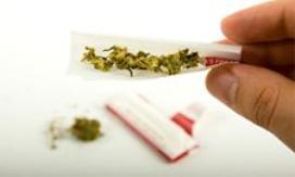 Les drogues les plus consommées chez les adolescents [ article du net ]