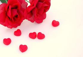 ~ Saint Valentin Pour Les Célibataires