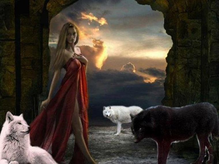 les sentiments chez le loup ou la louve  très complexe  mais  quand on fait un effort pour les comprendre, hurlements rapprochements communications détresse ou autres ???