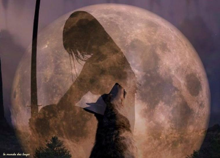 une louve a été tué !!!!!!!!!!!!!!!! :'( et encore et encore  mais  arrêtezzzzzzzzzzzzzzzzzzzzzzzzzzzzzzzzzzzzzzD'autres mots tout simplement se dissolvent en larmes ...