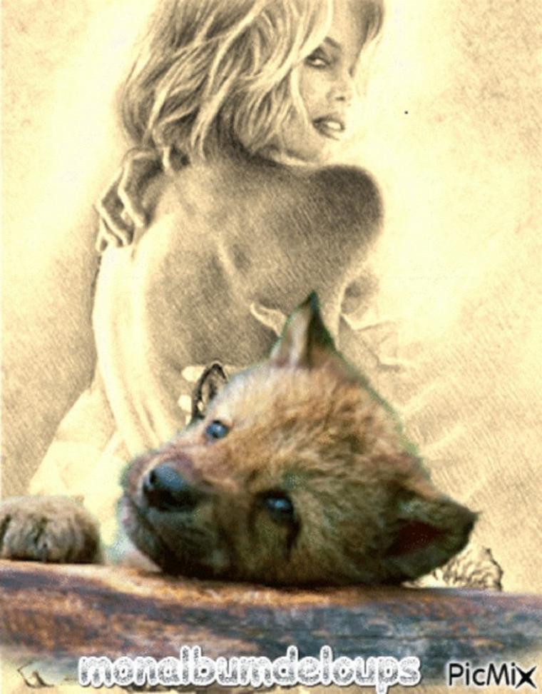 Une femme retrouve ses loups après 2 mois d'absence