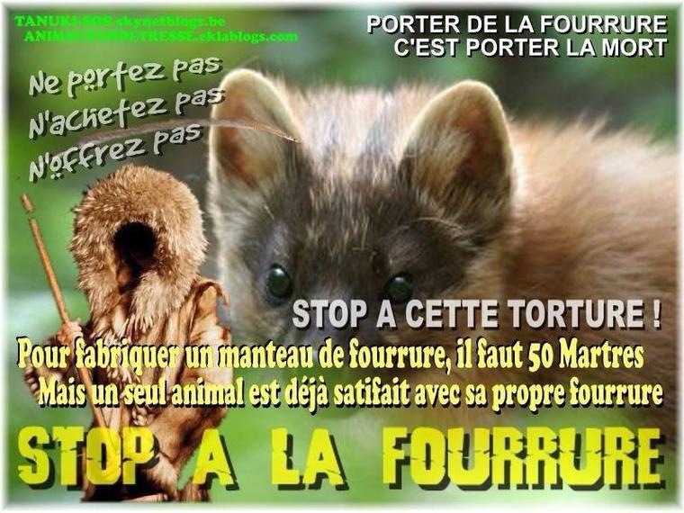Encore une victoire !!!! KOOKAÏ arrête officiellement la fourrure animale !