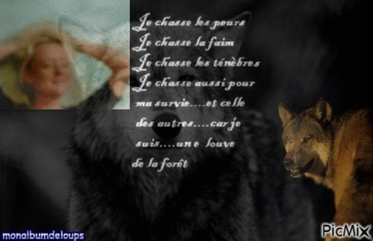 Il est temps que le silence assourdissant des associations ayant validé le Plan Loup 2013-2017 cesse ! Nous savons tou-te-s que FERUS, le WWF France et la FNE sont très puissantes au sein du ministère de l'écologie. Il n'est pas encore trop tard pour qu'elles interviennent ; mais il y a URGENCE.