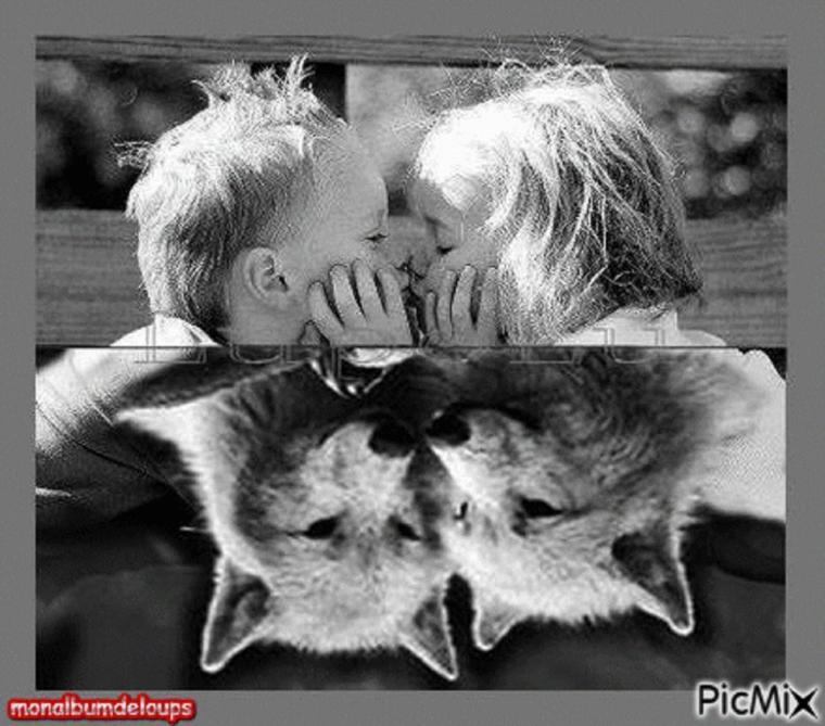 Arrêtez l'expérimentation sur les animaux! Cesser d'abuser des animaux ! SUIVIE  D'une vidéo d'un sauvetage d'un chien capturé par un python géant