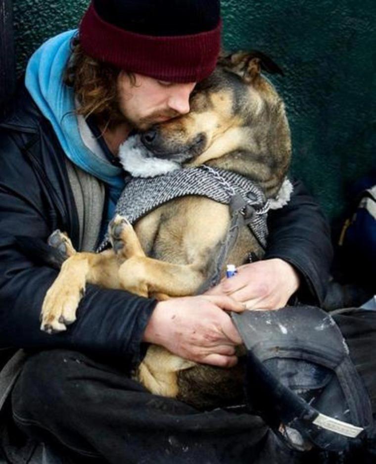 En ce début d'hiver qui arrive je voudrais parler des animaux et de leurs maitres qui vivent dans les rues
