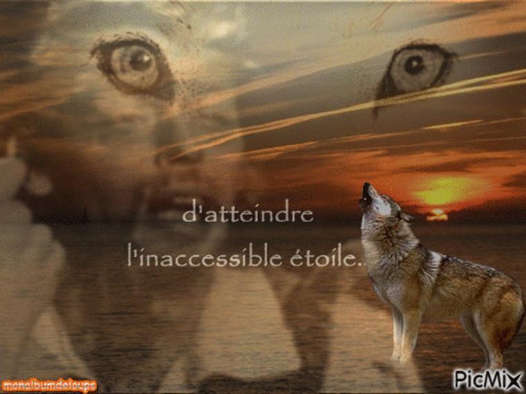 """"""" """"Souvent, l'âme du loup me montre le chemin et me fait penser, que l'amour est plus fort que la mort"""" """""""