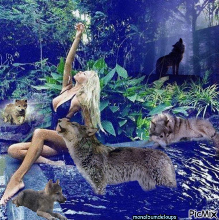 les maladies que le loup peut contracter