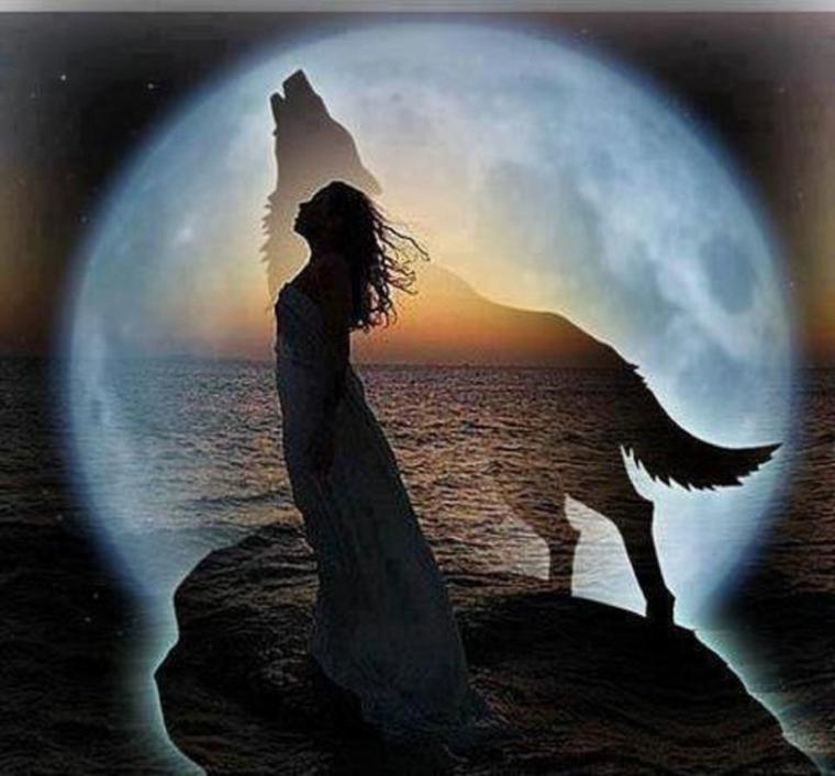 mes cris sont peut être rien pour vous le principal c'est qu'ils sont pour mes loups on a pas un coeur pour l'humain ou un coeur pour l'animal on a un coeur ou on en a pas on ferme les yeux ou on les ouvre si on les ouvre on assume et on se bat  !!!