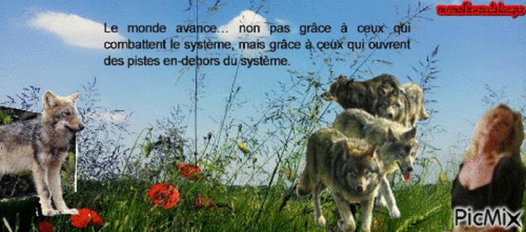 Aspect spirituel du Loup