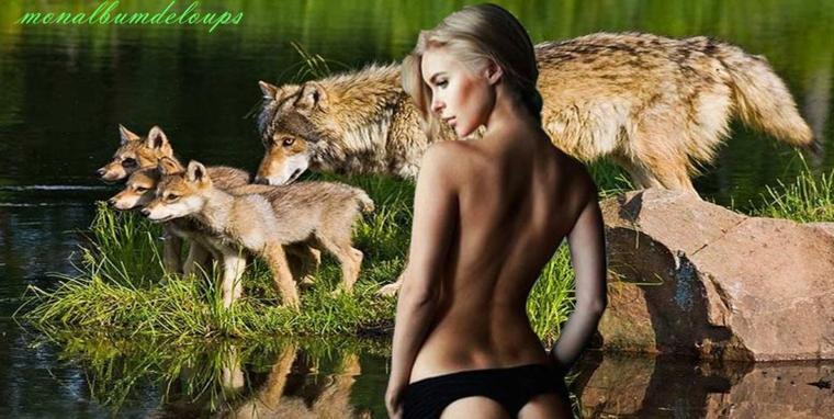 L'attitude à avoir face à un animal sauvage