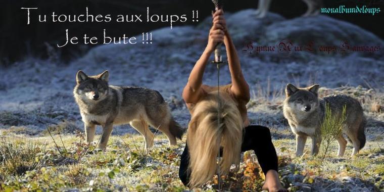 """Alfred de Vigny, """"La Mort du Loup"""", Les Destinées"""