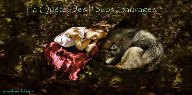 """INFO :  """" Oui !!! Le Luxembourg maintient son interdiction de chasser les renards. """" Forts de ces exemples autour de nous, en France, notre combat pour l'instauration d'une protection légale des animaux sauvages va continuer, plus que jamais !!!"""