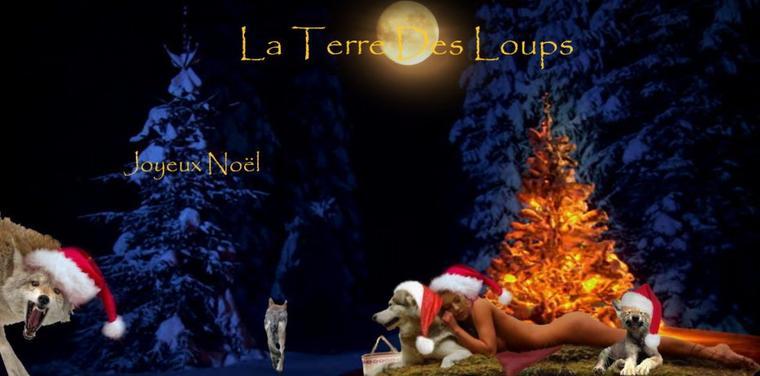 Joyeux Noël à tous les animaux