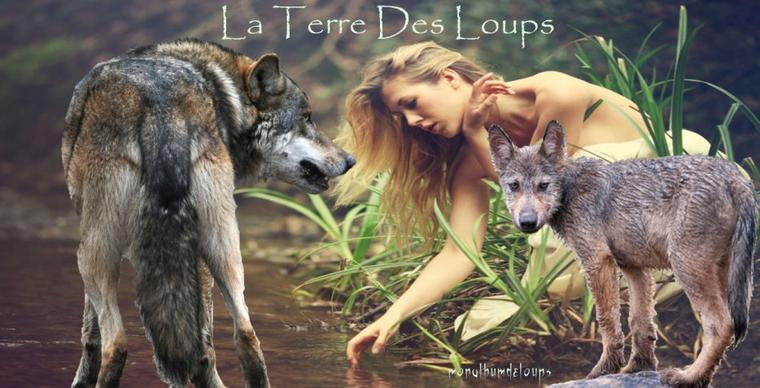 Ouvrons le débat : les animaux sauvages sont-ils nuisibles et les exterminer est-il la solution ? Les cas du loup et du renard.