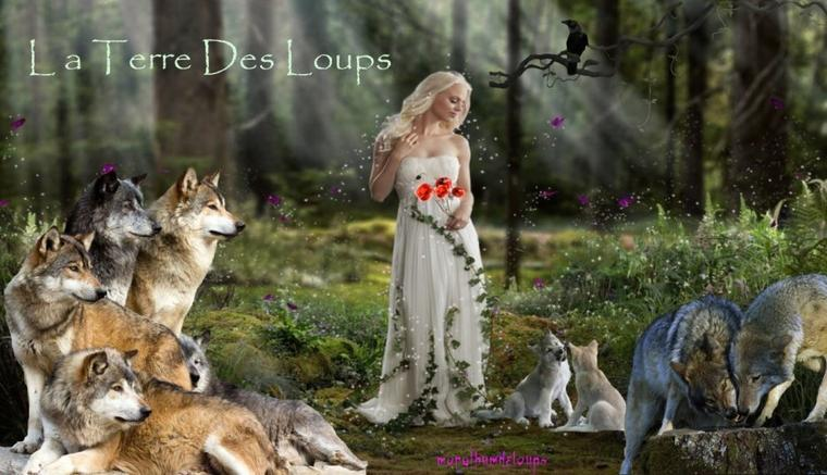 Une Histoire de Loups - fantastique MAGNIFIQUE !!!!!!  Suivie du film the promise d'almo nature