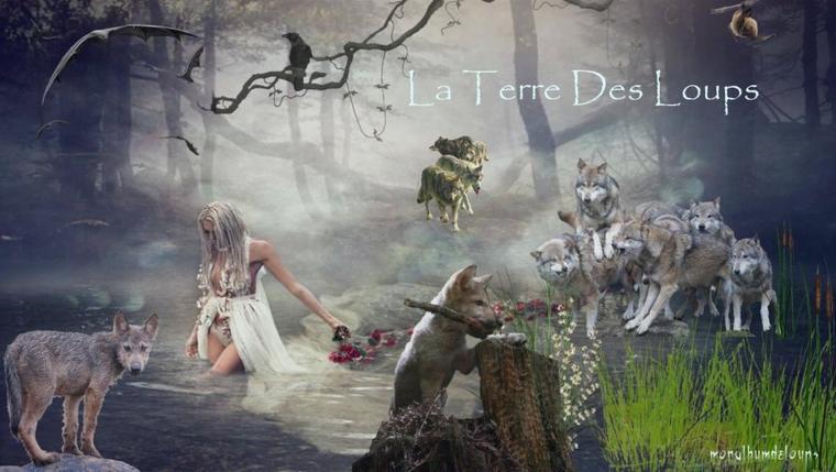 Pour un avenir avec le loup, rejoignez le PACTE DU LOUP EN FRANCE...