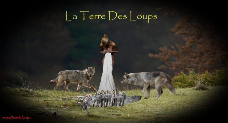 Le loup : de l'écologie scientifique à la politique politicienne...