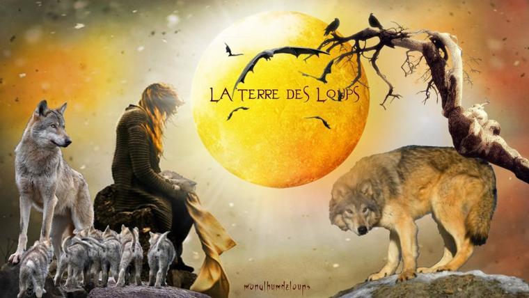 Jusqu'à quel âge vivent les animaux ???  Qui mange le loup ???  Pourquoi votre chien n'enterre pas ses os ???