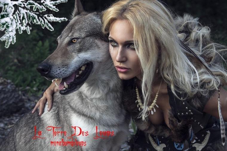 L'organisation d'une meute de loups