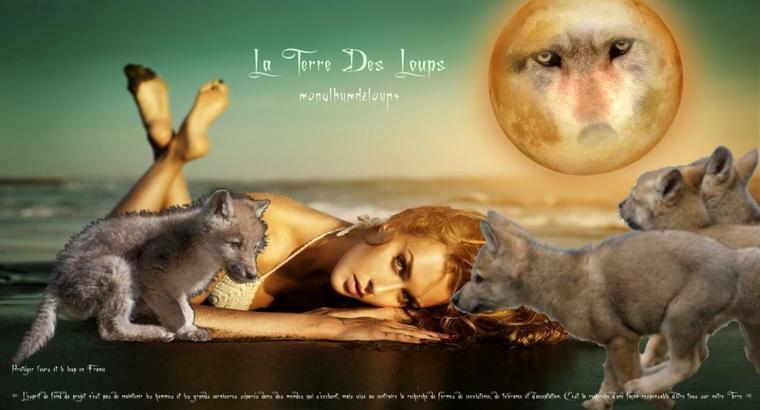 Protéger l'ours et le loup en France....