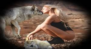 Attention ! Cette maladie très grave pour les chiens est en recrudescence partout en France  !!! La parvovirose