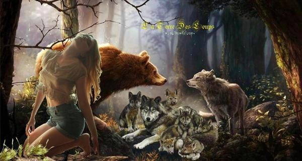Haute-Savoie: Un chasseur du Chablais reconnaît avoir abattu un loup  CHASSE La destruction d'espèce protégée est un délit dont la peine maximale encourue est de deux ans de prison et de 150.000 euros d'amende… Plan loup: «Pour améliorer la protection des troupeaux, il faut apprendre à connaître le loup»