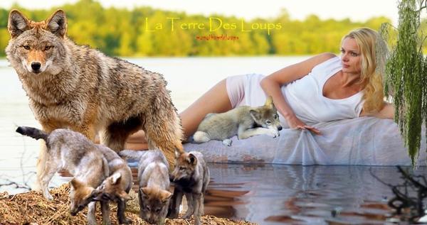 Le renard, éternel mal-aimé ???  Le renard mérite naturellement mieux que ça et c'est à chacun d'entre nous de contribuer au rétablissement de la vérité le concernant : comme le loup, l'ours, le lynx… le renard ne souhaite pas que nous l'aimions mais, assurément, juste qu'on lui fiche la paix !!!!!!!!!!!!!!!!!!!!!