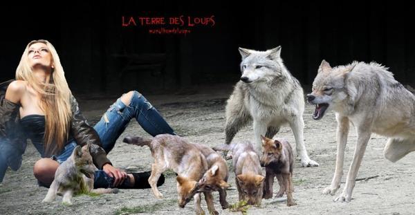 Quand et pourquoi avons-nous domestiqué le loup ? Une nouvelle hypothèse.....