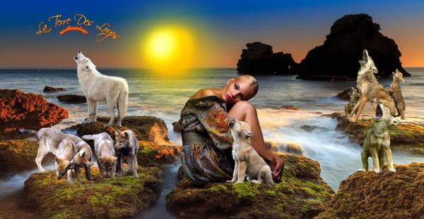 Immunologie des animaux sauvages et domestiques.......