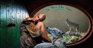 """Des dizaines de loups, espèce protégée, sont abattus """"légalement"""" :'( chaque année en France. Comme au Moyen-âge, la chasse aux loups continue en France, au mépris de la biodiversité, de la loi, et de l'avis des Français."""