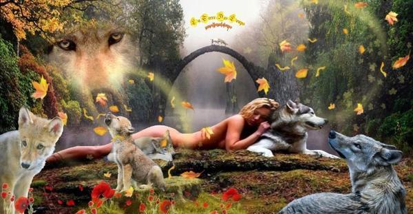 Le dhole ou chien sauvage d'Asie...Plus communément appelé chien sauvage d'Asie ou Cuon alpinus par les scientifiques, ce canidé aux allures de loup et de renard roux est une espèce « en danger », d'après l'Union Internationale pour la Conservation de la Nature (UICN). Partout sur son aire de répartition, le dhole voit en effet sa population sauvage décliner...