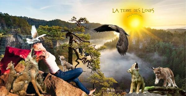 L'humain nuit gravement à l'équilibre des écosystèmes