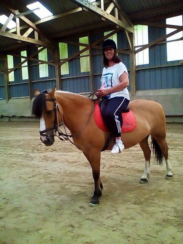 quelques   photos   de moi   a la  foire   de Dieppe    et    du cheval     ♥♥♥