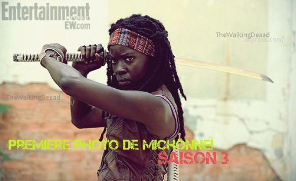Première image de Michonne!