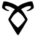 The Mortal Instruments , Tome 1 La cité des ténèbres/La coupe mortelle de Cassandra Clare