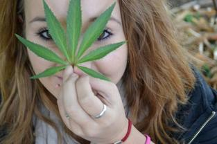 SMOKE WEED EVERYDAY ♪