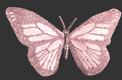Habillage nO 1