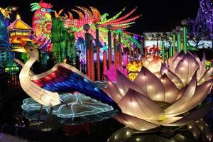 Festival des lanternes à Gaillac (Tarn) (suite)
