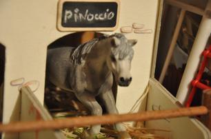 poneys dans box    :)