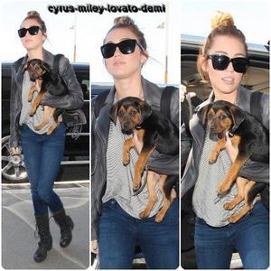 14.05.12 : Miley à l'aéroport LAX.