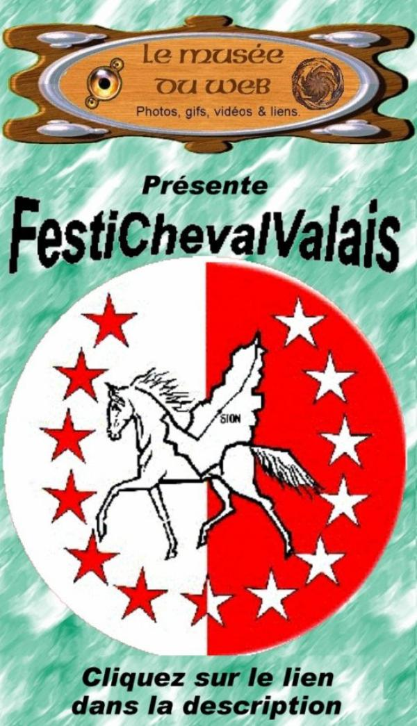 FestiChevalValais 2012.