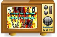 Les vidéos d'Oursibear.