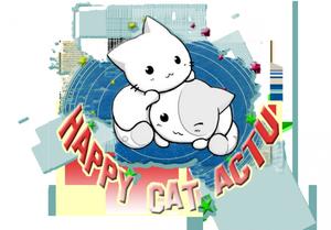Allentest995 est partenaire avec Happy Cat Actu