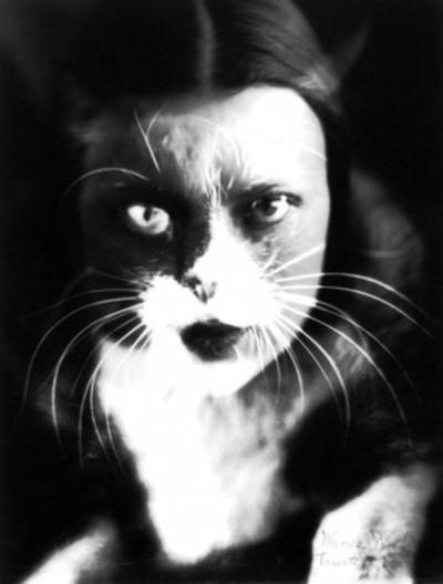 ~Chapitre 6 #Humans-Cats ~