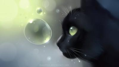 ~Chapitre 7 #Humans-Cats ~