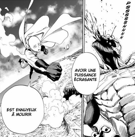 Madame Bovary VS One Punch-Man