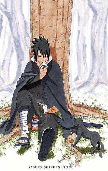 Critique - Avis - Discussion : L'après Shippuden Arc 1 - Sasuke Shinden