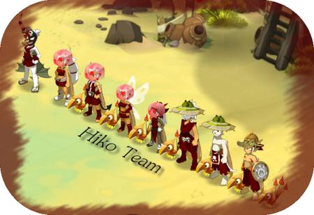 Hiko Team