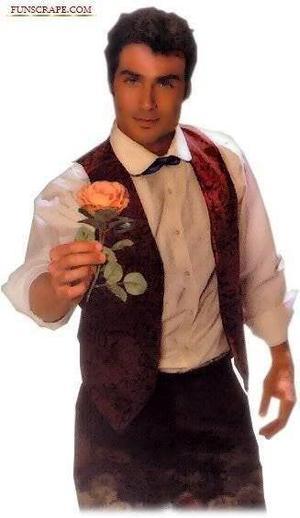 une rose près de ton coeur